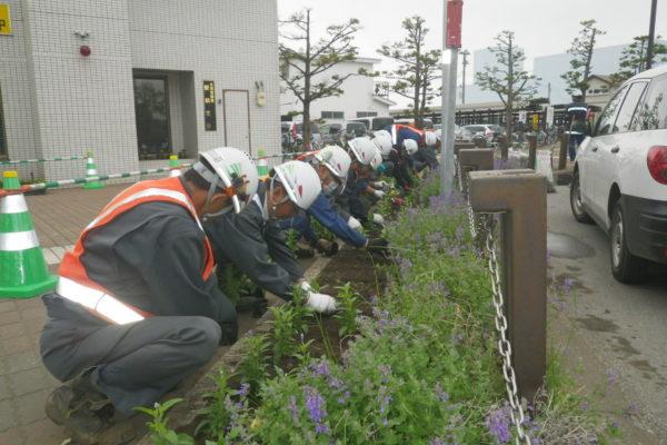 平成29年度 JR北見駅前花壇の植栽と花壇整備を行いました。